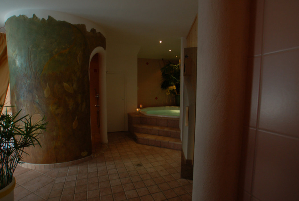 Wellness - Sauna - Hot whirlpool - and...