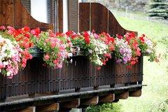 Blumendekoration außen