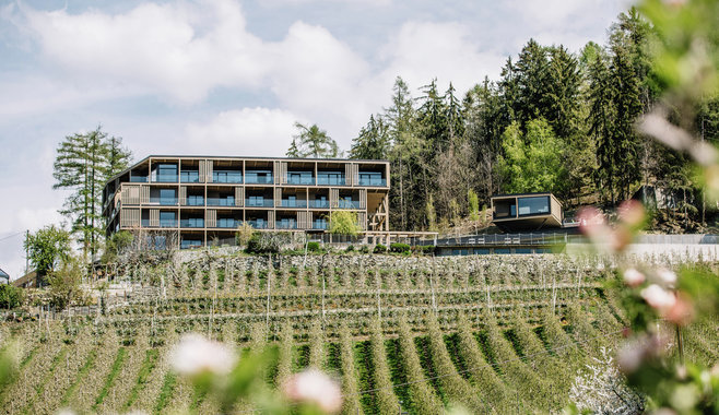 Panoramic Suites Winzerhöhe
